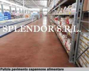 Splendor SRL impresa di pulizie e disinfestazione a Bari in Puglia